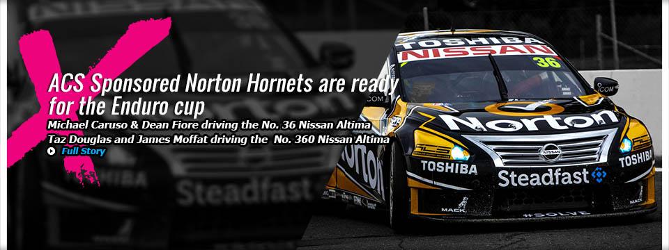 norton hornets